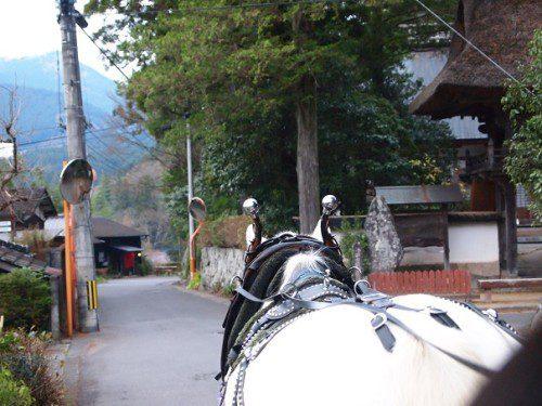 馬車からの景色